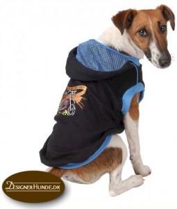 Billigt hundetøj til din hund